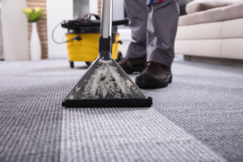 keep-carpets-clean-to-eliminate-germs-and-viruses