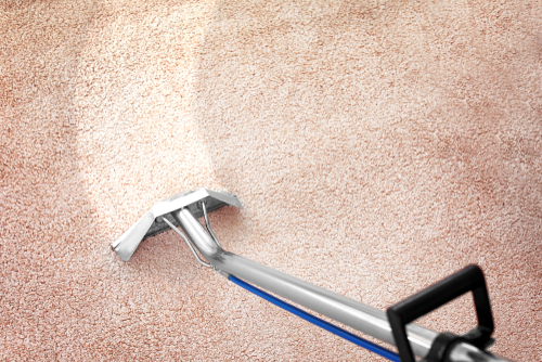 treating-the-carpets-to-destroy-germs-and-viruses