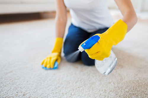 Carpet-spot-cleaning