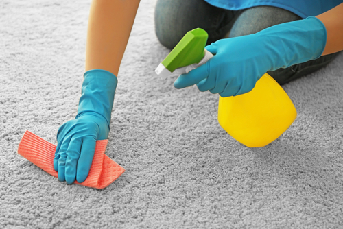 How to Remove Oil Stain from Rug