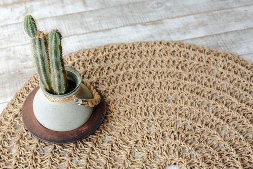 What Type Of Rug Is Easiest To Keep Clean?